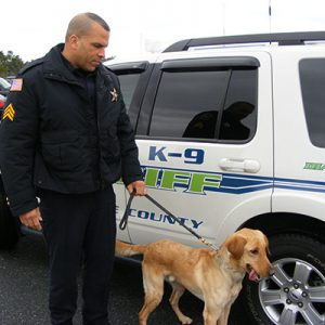 Officer and dog