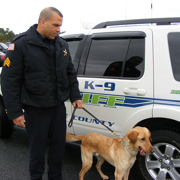 canine and officer