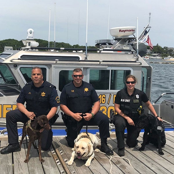 police officers and dogs